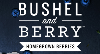 Bushel and Berry Catalog