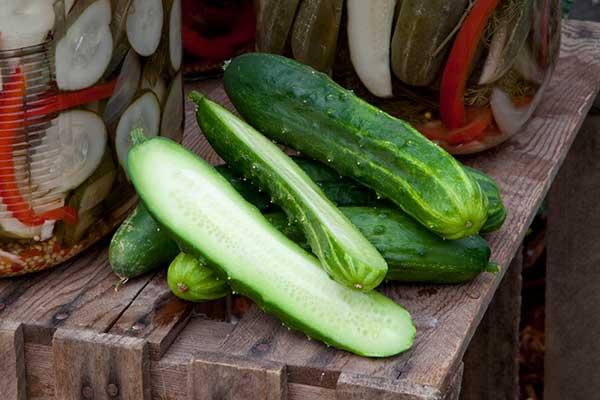 Cucumber PetiPikel